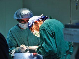 Dr Ba & Dr Walker